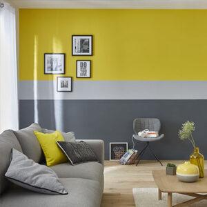 Pittura Murale per interni